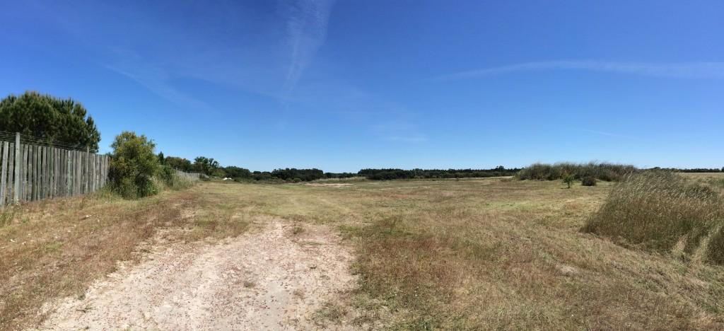 O terreno limpinho.